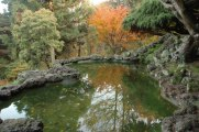 423_Fall-Scenic_Nov0758-(2)-Rockery-Pool-DeepCut-450x299